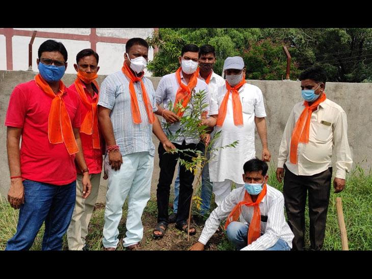 બોડેલી સહિત છોટાઉદેપુર જિલ્લાની 32 જિલ્લા પંચાયત બેઠકો પર વૃક્ષારોપણ કાર્યક્રમ થયા. - Divya Bhaskar