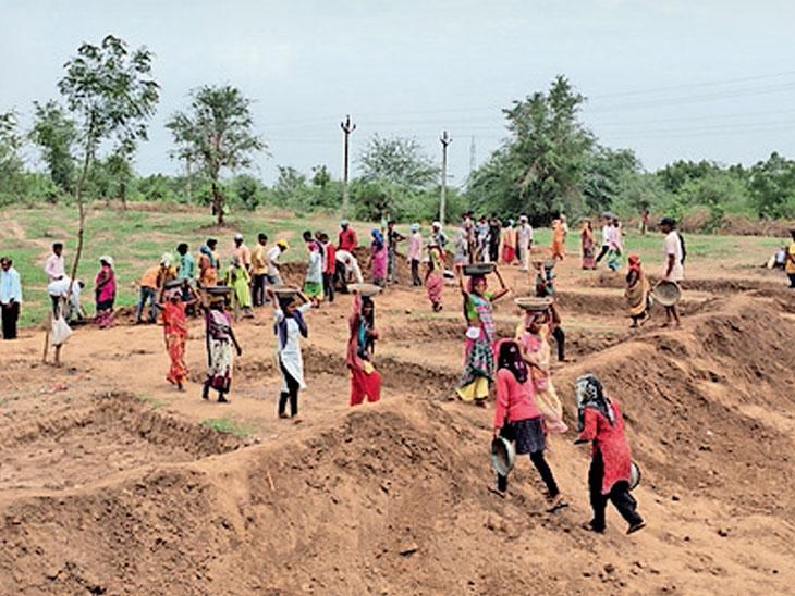 નર્મદામાં કોરોના કાળમાં NREGAથી એક લાખથી વધુ લોકોને રોજગારી મળી|રાજપીપળા,Rajpipla - Divya Bhaskar