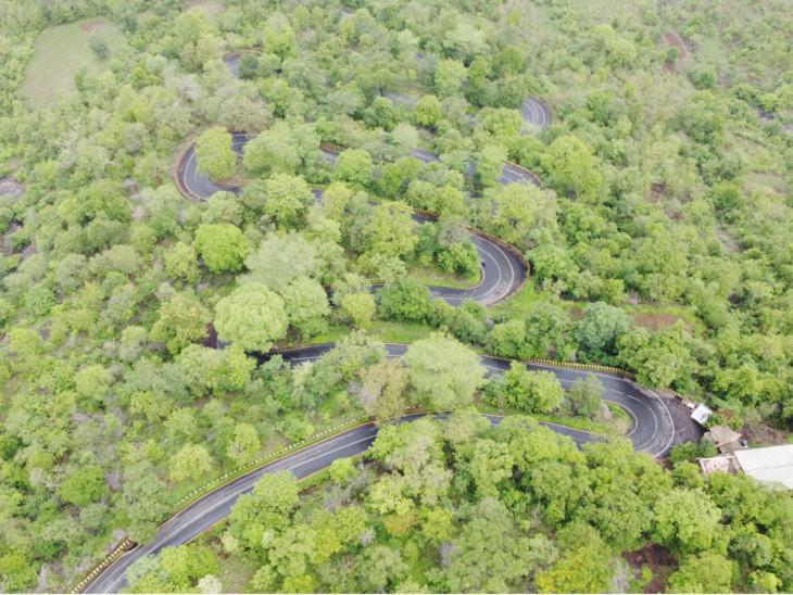 ધરમપુરથી વિલ્સન હિલ જતા ઘાટ અને વળાંક સાથેનો સર્પાકાર રસ્તો - Divya Bhaskar