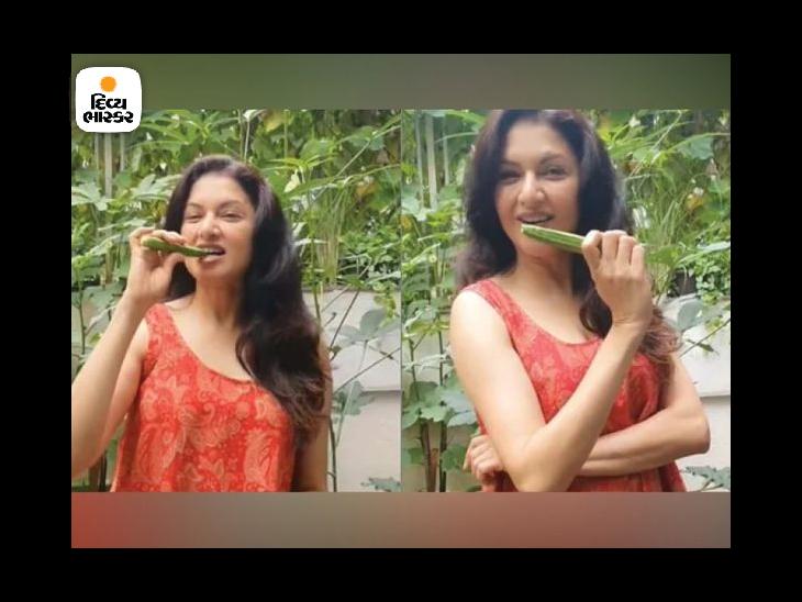 ભાગ્યશ્રીએ સોશ્યલ મીડિયા પર કાચા ભીંડા ખાવાના ફાયદા જણાવ્યા, તે બ્લડ શુગર લેવલને નિયંત્રિત કરવામાં અને પેટની સમસ્યાઓને દૂર કરવામાં અસરકારક છે|લાઇફસ્ટાઇલ,Lifestyle - Divya Bhaskar
