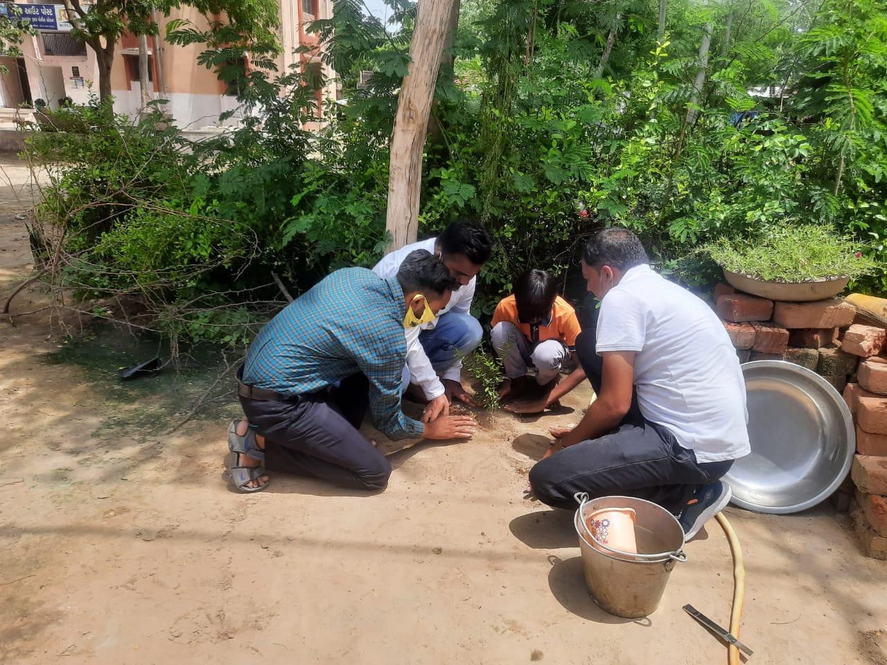 વૃક્ષારોપણના પ્રોજેક્ટમાં શિક્ષક, વાલીઓની બાળકોએ મદદ લીધી