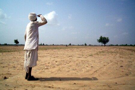ઝાલાવાડ પંથકમાં ગયા વર્ષની સરખામણીએ આ વર્ષે વરસાદ ઓછો, ખેડૂતોને પાક સુકાઇ જવાનો ભય - Divya Bhaskar