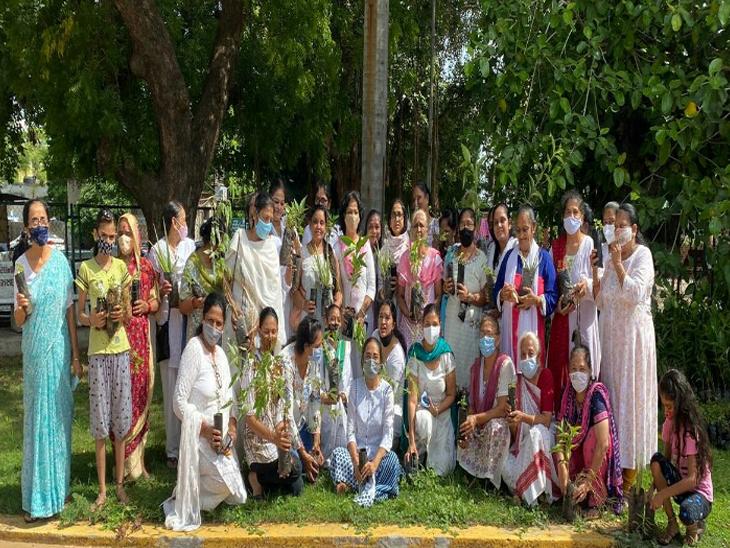 ચોમાસમાં વરસાદ પડતાની સાથે પર્યાવરણ બચાવો હેઠળ વૃક્ષોનું વાવેતર કરવામાં આવી રહેલ છે. - Divya Bhaskar