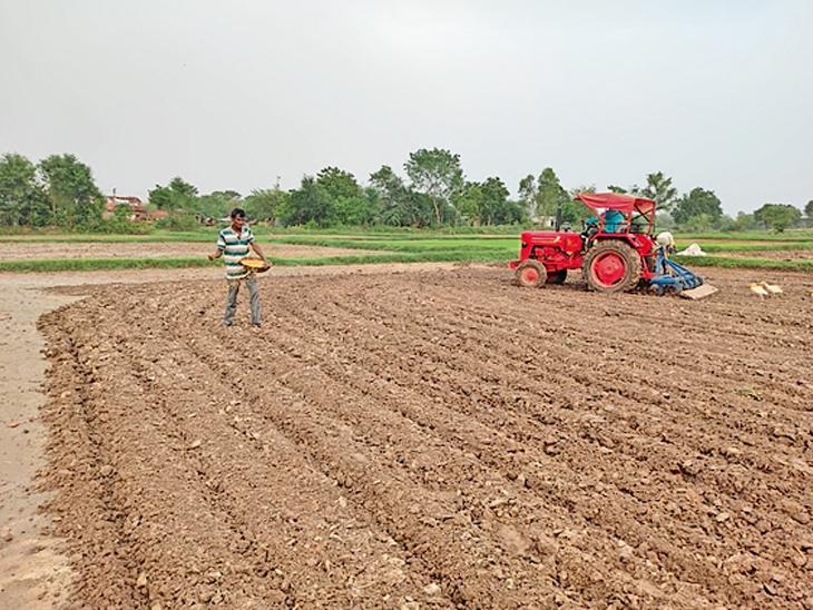 ખેડા જિલ્લામાં 10માંથી 5 તાલુકામાં 20 ટકાથી ઓછો વરસાદ, હવે ધરતીપુત્રોને મેઘાના પુનરાગમનની વાટ નડિયાદ,Nadiad - Divya Bhaskar