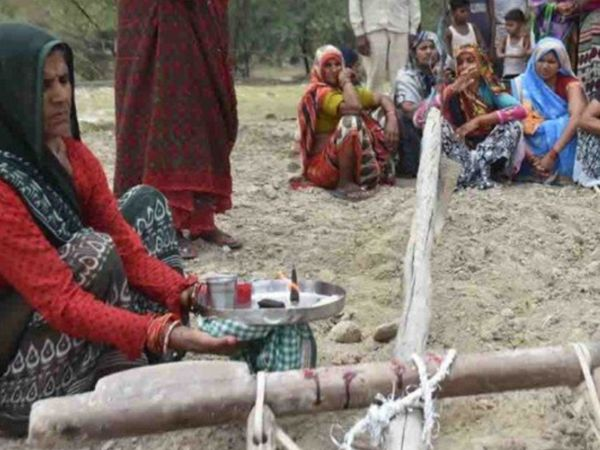 આ દિવસે હળની પૂજા કરવાથી અને વૃક્ષ-છોડ રોપવાથી સુખ-સમૃદ્ધિ વધે છે|ધર્મ,Dharm - Divya Bhaskar