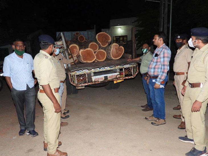 બોલેરો પીકઅપ ગાડી કબ્જે કરીને નરેન્દ્રભાઈ રાઠવાની વન વિભાગે અટકાયત કરી પૂછપરછ હાથ ધરવામાં આવી હતી. - Divya Bhaskar