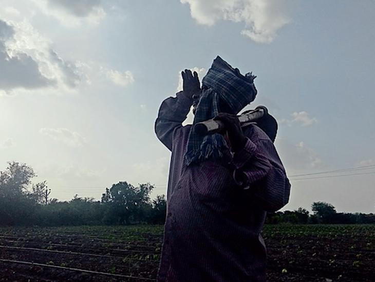 વરસાદની આતુરતાથી રાહ જોતા ધરતીપુત્રો. - Divya Bhaskar