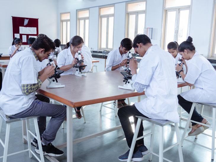 પારુલ યુનિવર્સિટીને શ્રેષ્ઠ કૃષિ કોલેજનો કેટેગરી એવોર્ડ અપાયો વડોદરા,Vadodara - Divya Bhaskar