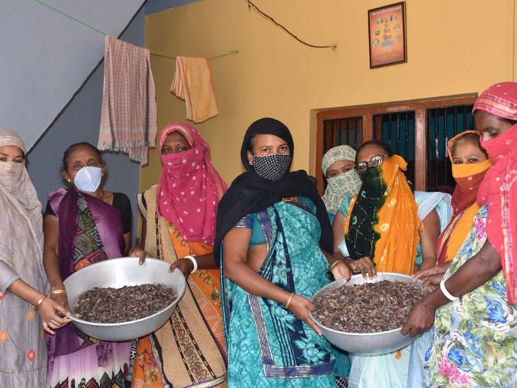 વિરપુરની સખી મંડળની બહેનોએ લીંબોળી એકત્રીત કરી વેચાણ કરી રોજગારી મેળવી - Divya Bhaskar