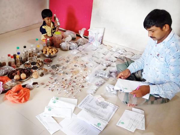 બીજ તૈયાર કરી પોસ્ટ ઓફિસના માધ્યમથી લોકોના ઘરે-ઘરે પહોંચાડાય છે. - Divya Bhaskar