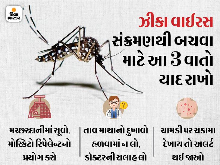 ગર્ભવતી મહિલાઓ અને નવજાતને ઝીકા વાઈરસથી સૌથી વધારે જોખમ, મચ્છરોથી બચીને રહો; તાવ અને માથાનો દુખાવો જેવાં લક્ષણો જણાય તો અલર્ટ થઈ જાઓ|હેલ્થ,Health - Divya Bhaskar