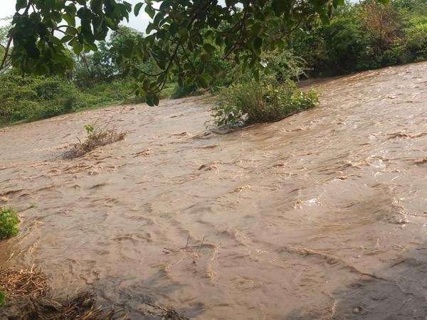પ્રાચી નજીક રંગપુર ગામે ભારે વરસાદથી વોંકળા પુર ની સ્થિતિ સર્જાઈ હતી, વોંકળા માં પાણી આવતા વાડી વિસ્તારથી ગામમાં આવતો રસ્તો  બે કલાક  બંધ રહ્યો હતો. - Divya Bhaskar