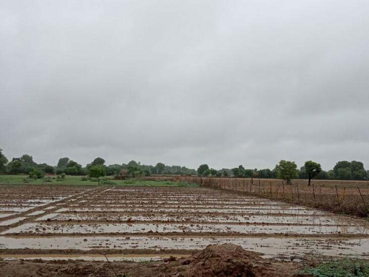 ઉત્તર ગુજરાતમાં પણ મેઘમહેર થતાં ખેડૂતો ખુશખુશાલ જોવા મળ્યા હતા.