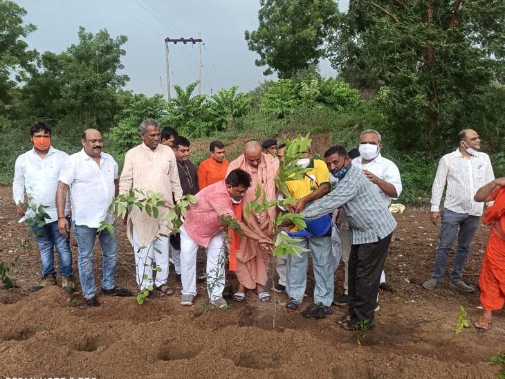 શ્રી સ્વામીનારાયણ મંદિર, પંચેશ્વર મહાદેવ મંદિર પાસે ભારતીય જનતા પાર્ટી દ્વારા છોટાઉદેપુર જિલ્લાનો વૃક્ષારોપણનો કાર્યક્રમ યોજવામાં આવ્યો હતો - Divya Bhaskar