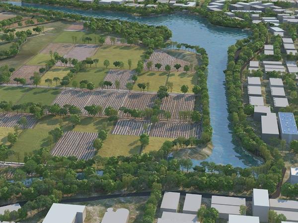 યુ.એન.મહેતા ફાઉન્ડેશનના સહયોગથી ગામતળાવને સુંદર બનાવાશે. - Divya Bhaskar