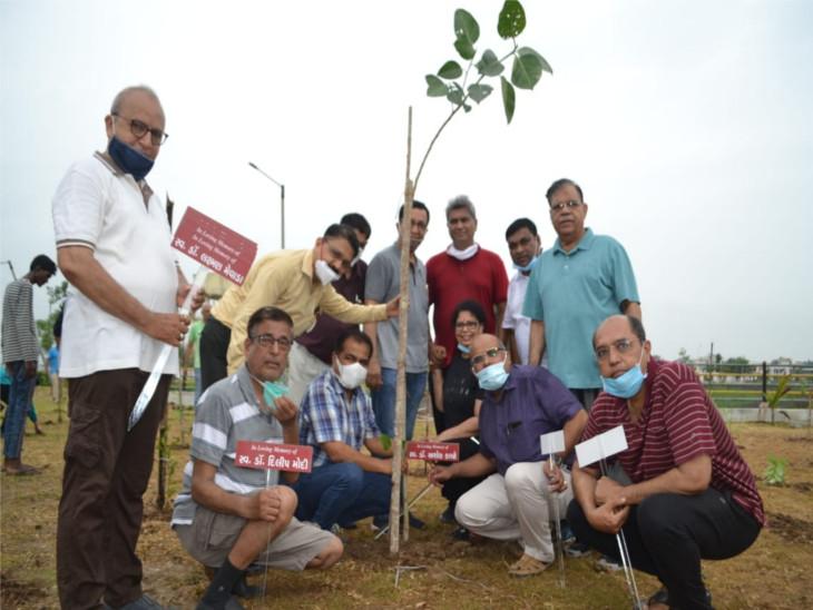 સુરતમાં ભેસાણ ગામના લેક ગાર્ડન પાસે કોરોના કાળમાં મૃત્યુ પામેલા ડોક્ટર્સની યાદમાં વૃક્ષારોપણ કરાયું|સુરત,Surat - Divya Bhaskar