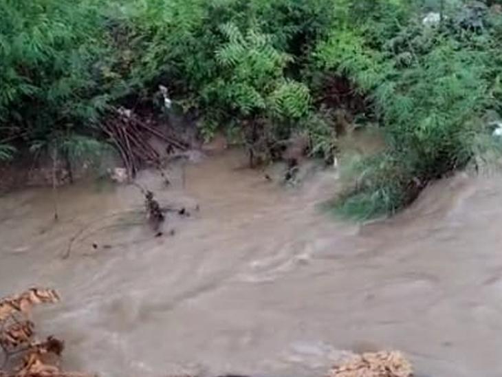 કલ્યાણપુર તાલુકા નહેર બેકાંઠે - Divya Bhaskar