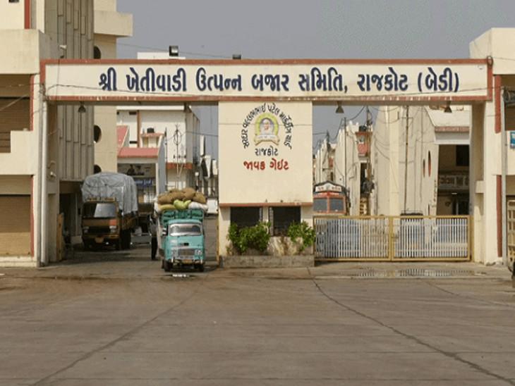 સૌરાષ્ટ્રના સૌથી મોટા રાજકોટ માર્કેટ યાર્ડની ચૂંટણી 5 ઓક્ટોબરે, આજે કપાસનો 1 મણનો ભાવ 1721 રૂપિયા બોલાયો, 11 વર્ષનો રેકોર્ડ તૂટ્યો|રાજકોટ,Rajkot - Divya Bhaskar