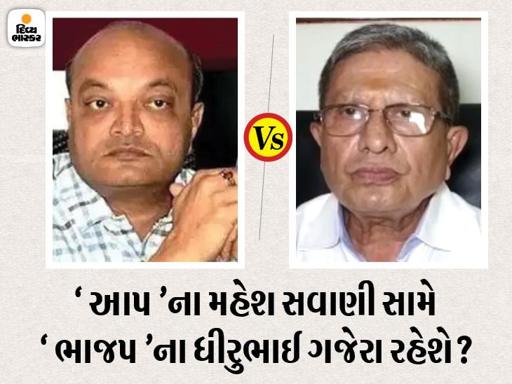 સુરત ભાજપમાં જોડાતા અગાઉ પાટીદાર નેતા ધીરુ ગજેરાએ કહ્યું, મારા જિદ્દી સ્વભાવને કારણે પરત ફરવામાં મોડું થયું, ગુજરાતમાં ત્રીજો પક્ષ ફાવશે નહીં સુરત,Surat - Divya Bhaskar