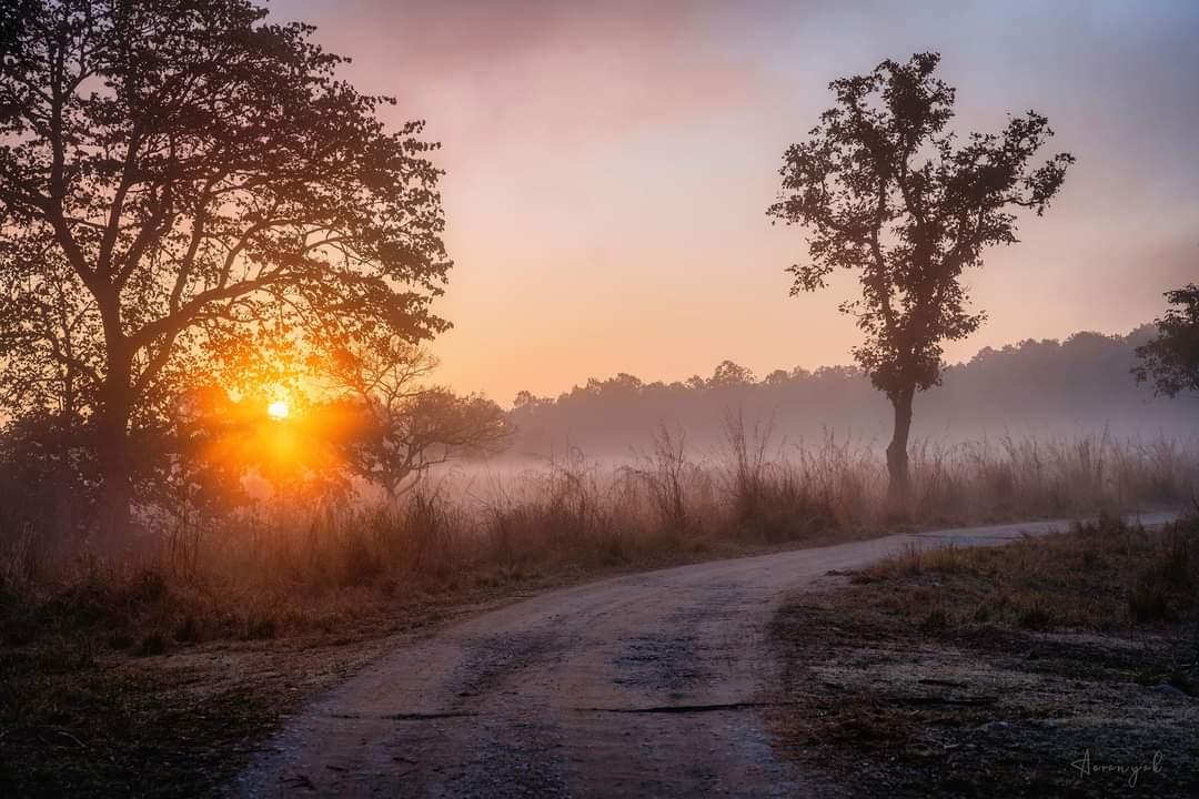 આથમતો સૂર્ય જાણે ધરણીના આગોશમાં પોઢી જવા માટે આતુર હતો