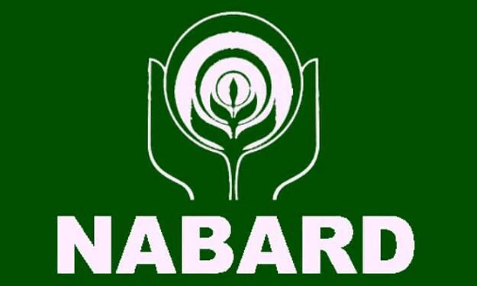 NABARDએ આસિસ્ટન્ટ મેનેજર અને મેનેજરની 162 જગ્યા પર ભરતી જાહેર કરી, 7 ઓગસ્ટ પહેલાં અપ્લાય કરો યુટિલિટી,Utility - Divya Bhaskar