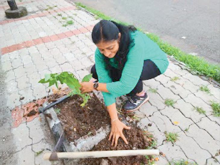 વૃક્ષ વાવતી શિક્ષિકા - Divya Bhaskar