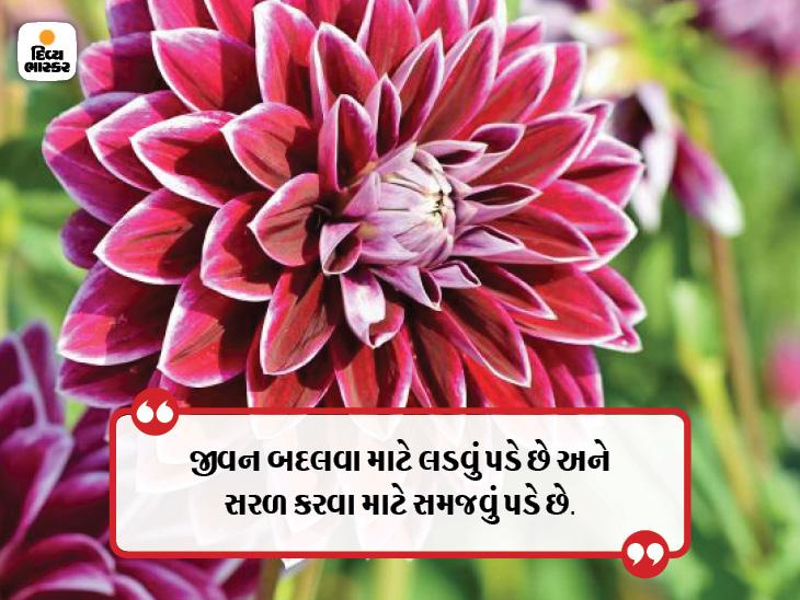 સારા લોકોની સૌથી મોટી ખાસ વાત એ છે કે તેમને યાદ રાખવા પડતા નથી, સારા લોકો યાદ રહી જાય છે|ધર્મ,Dharm - Divya Bhaskar