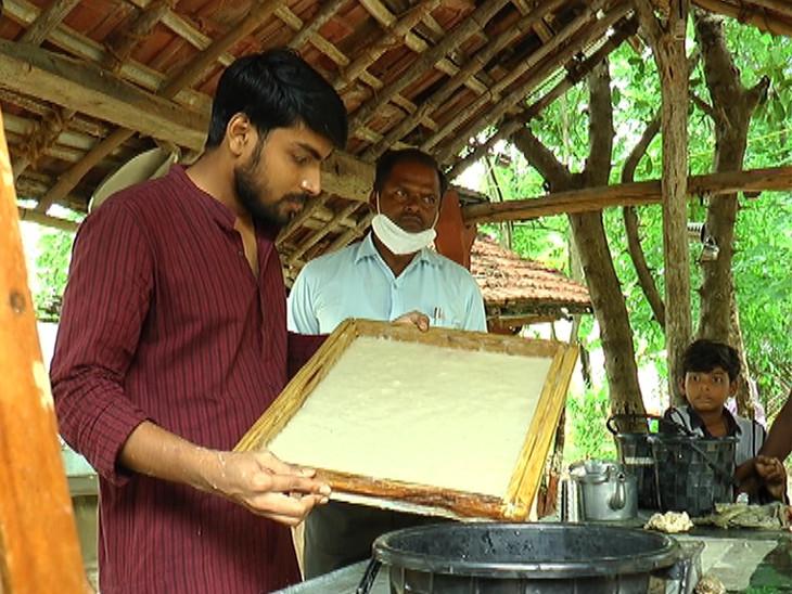 રિસર્ચ કરી કેળના થડમાંથી કાગળ બનાવ્યો, તેજગઢના ભાષા સંશોધન કેન્દ્રમાં જયપુરના યુવાને સંશોધન કરી બનાના પેપર બનાવ્યું પાવી જેતપુર,Pavi Jetpur - Divya Bhaskar