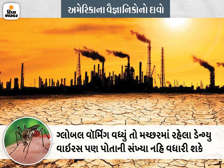 ગરમી વધવાથી ડેન્ગ્યુ ફેલાવતા મચ્છર નબળા બની જાય છે, તે ન ઉડી શકે છે ન તો માણસને સંક્રમિત કરી શકે છે|લાઇફસ્ટાઇલ,Lifestyle - Divya Bhaskar