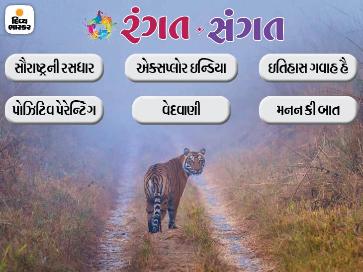 વાઘનાં કરતબોથી લઇને 'હિંદુ પાણી-મુસ્લિમ પાણી'નો ભેદ અને એન્ઝાયટી ઉકેલ સાથે પેરેન્ટિંગની સાચી સમજણ પર રસપ્રદ લેખો, આજનું 'રંગત-સંગત' આ રહ્યું|રંગત-સંગત,Rangat-Sangat - Divya Bhaskar