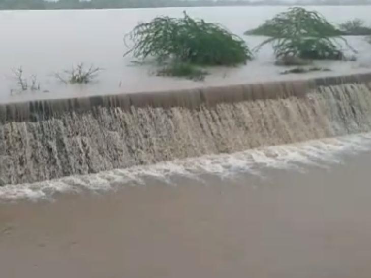 જૂનાગઢ જિલ્લાના 9 તાલુકામાં 1 થી 4 ઈંચ વરસાદ વરસતા ધરતીપુત્રો ખુશખુશાલ જુનાગઢ,Junagadh - Divya Bhaskar