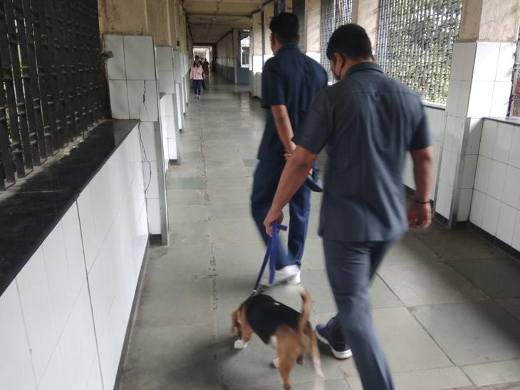મંગુભાઈ નવસારી આવ્યા ને બોંબ-ડોગ સ્કવોડે સુરક્ષા હેતુથી સિવિલ હોસ્પિટલ ફંફોસી કાઢી|સુરત,Surat - Divya Bhaskar