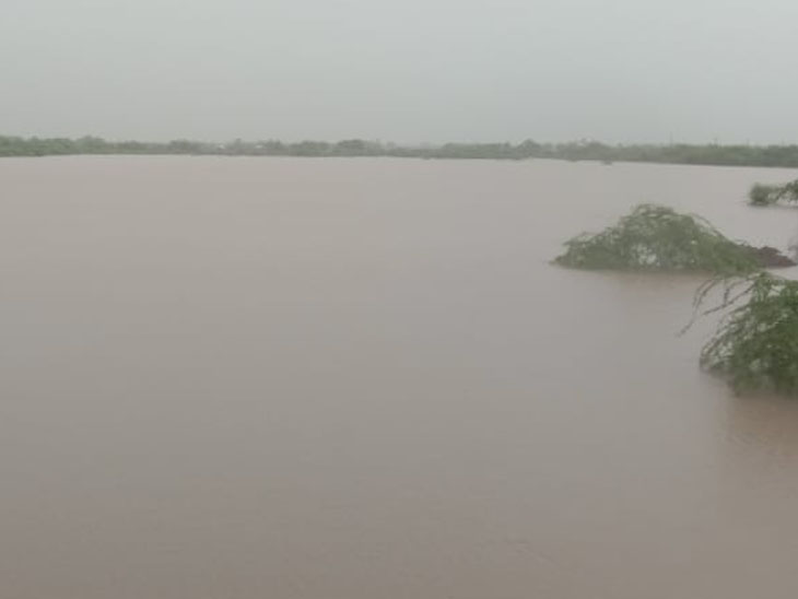 મેઘરાજાએ મન મૂકીને આપ્યું પાણી, હવે વાડી-ખેતરમાં લહેરાશે મોલાત: સૌરાષ્ટ્રમાં સાર્વત્રિક 1થી 10 ઈંચ વરસાદ રાજકોટ,Rajkot - Divya Bhaskar