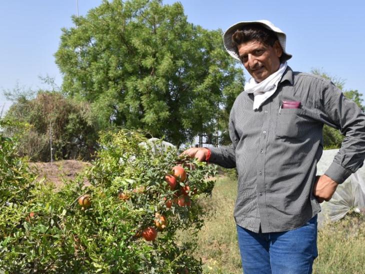 ખેડૂતો સાથે વાર્તાલાપ થતા કમલેશભાઈ ધીરે ધીરે ખેતી તરફ આકર્ષાયા હતાં