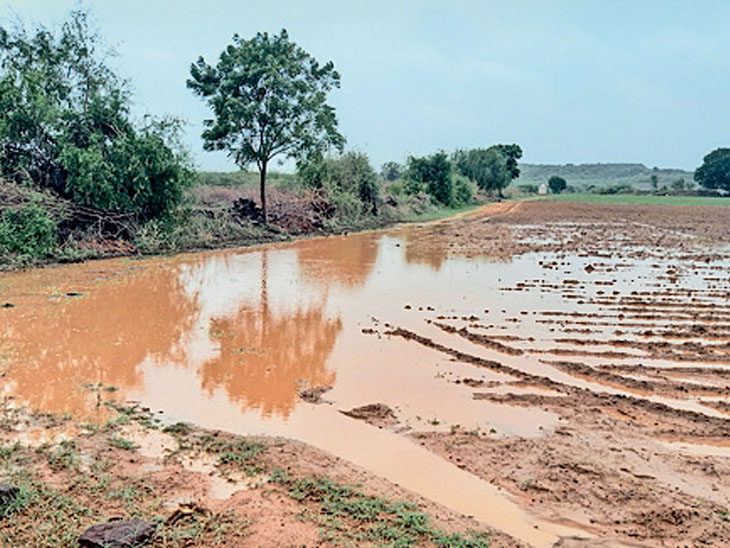 ગાંધીધામમાં અડધો, અંજાર-ભચાઉમાં પોણો ઇંચ વરસ્યો|ગાંધીધામ,Gandhidham - Divya Bhaskar