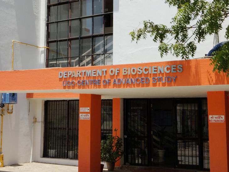 સૌરાષ્ટ્ર યુનિવર્સિટીમાં 3 મહિનામાં 8828 RT-PCR ટેસ્ટ થયા, 17 લાખનો ખર્ચ, ખાનગીમાં કર્યા હોત તો 61 લાખનો ખર્ચ થાત|રાજકોટ,Rajkot - Divya Bhaskar