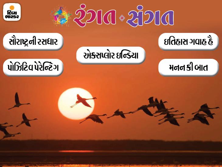 ગુજરાતમાં બર્ડ વૉચિંગનાં બેસ્ટ સ્થળો, કોઇપણ કામમાં માસ્ટરી મેળવવાની માસ્ટર કી, નેહરુયુગની ખાસિયત, મેઘાણીની નવી ઑડિયો વાર્તા... આજનું 'રંગત સંગત' આ રહ્યું|રંગત-સંગત,Rangat-Sangat - Divya Bhaskar