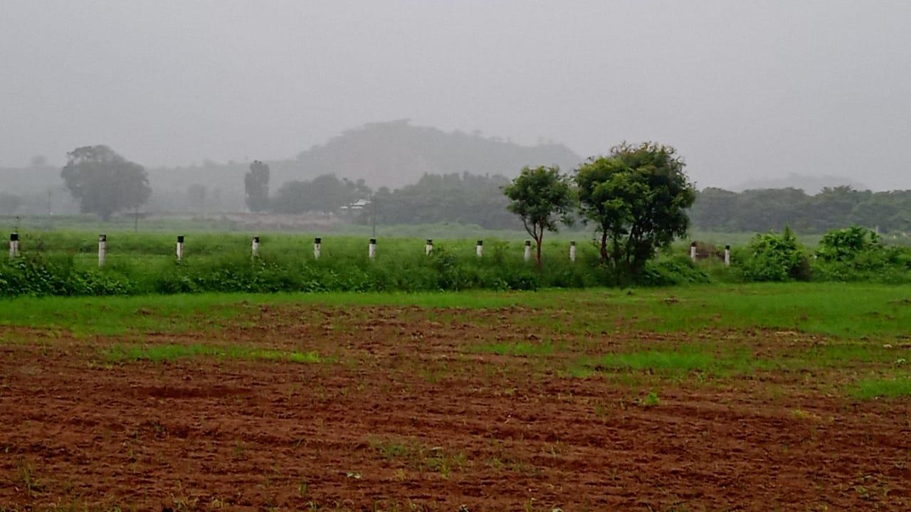 બનાસકાંઠામાં બે દિવસના વિરામબાદ વહેલી સવારથી ઝરમર ઝરમર વરસાદ શરૂ, ખેડૂતોમાં ખુશીનો માહોલ|પાલનપુર (બનાસકાંઠા),Palanpur (Banaskantha) - Divya Bhaskar