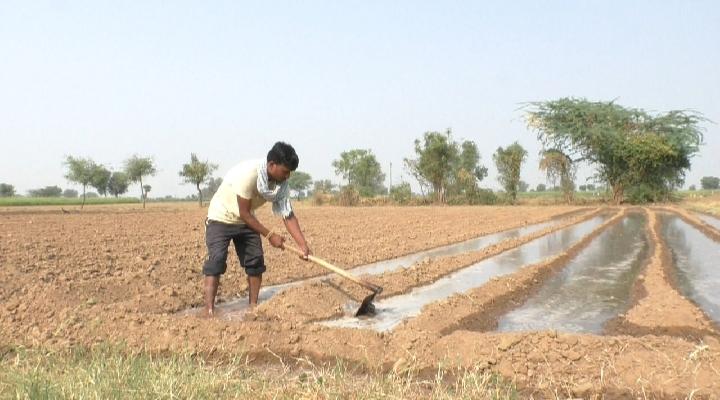 મહેસાણા જિલ્લામાં સતત ત્રણ દિવસથી ઝરમર ઝરમર વરસાદ, પરંતુ પૂરતો વરસાદ ન આવતાં ખેડૂતો ચિંતિત|મહેસાણા,Mehsana - Divya Bhaskar