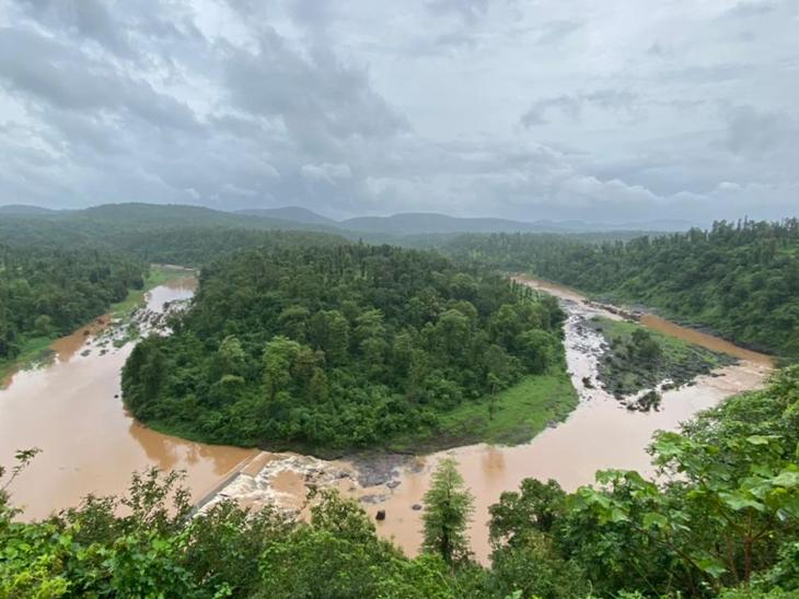 જંગલને આભૂષણ પહેરાવતી નદીનો યુટર્ન એટલે 'વનદેવીનો નેકલેસ'|નવસારી,Navsari - Divya Bhaskar