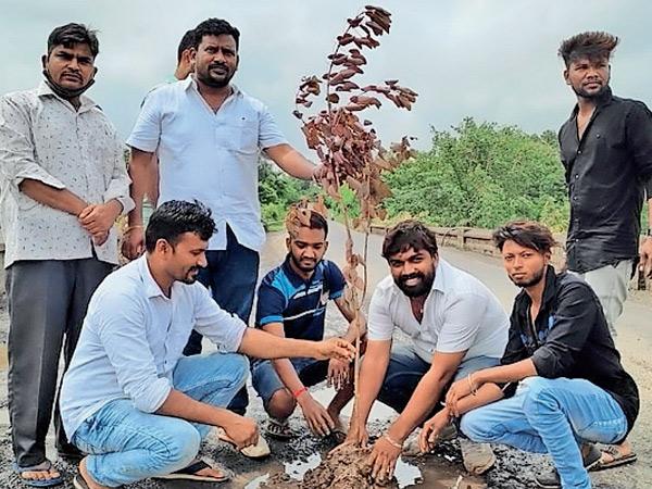 વાપી-શામળાજી હાઇવેના ખાડામાં MLA સાથે યુવાનોએ કર્યુ વૃક્ષારોપણ વાંસદા,Vansda - Divya Bhaskar