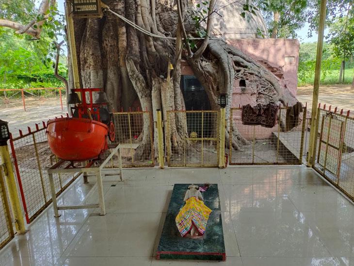 સાવન કો આને દો.. આજથી પવિત્ર શ્રાવણ|કપડવંજ,Kapadvanj - Divya Bhaskar
