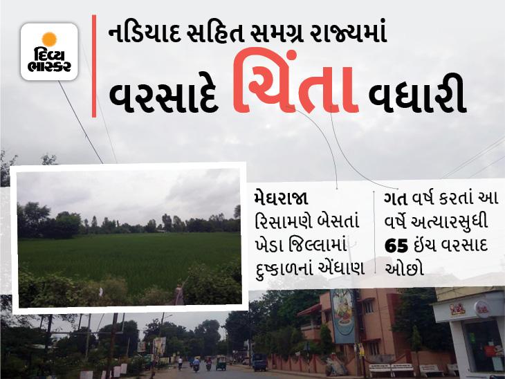 ખેડા જિલ્લામાં ગત વર્ષ કરતાં આ વર્ષે અત્યાર સુધી 65 ઈંચ ઓછો વરસાદ, 15 ઓગસ્ટ સુધી કોઈ એંધાણ નહી|નડિયાદ,Nadiad - Divya Bhaskar