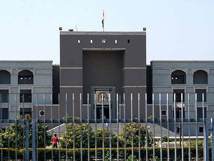 હાઈકોર્ટે મુસાફરને ડેપ્યુટી કમિશનર કસ્ટમ સાથે પોતાની રજૂઆત કરી પેમેન્ટ કરવા કહ્યું - Divya Bhaskar