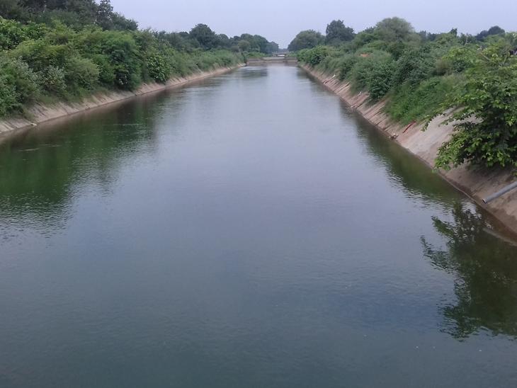 ચરોતરમાં સિંચાઇ માટે પાણી છોડાયું પણ સમસ્યા યથાવત આણંદ,Anand - Divya Bhaskar