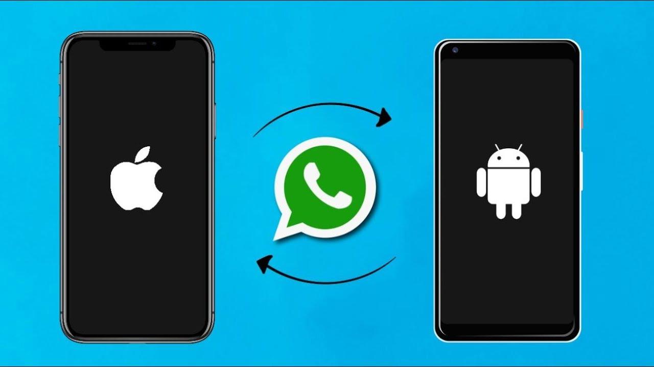 હવે આઈફોન યુઝર્સ એન્ડ્રોઈડ ફોનમાં ચેટ માઈગ્રેટ કરી શકશે, સેમસંગના પ્રીમિયમ ફોન્સની શ્રીગણેશ થશે|ગેજેટ,Gadgets - Divya Bhaskar