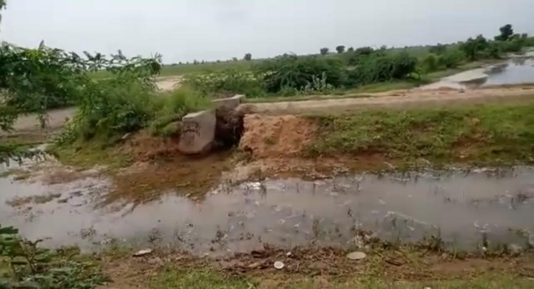 લખતર ભડવાણા માઇનોર કેનાલમાં ભંગાણ, 100 વીઘાના ખેતરોમાં કેનાલના પાણી ફરી વળતા ખેડૂતો પાયમાલ - Divya Bhaskar