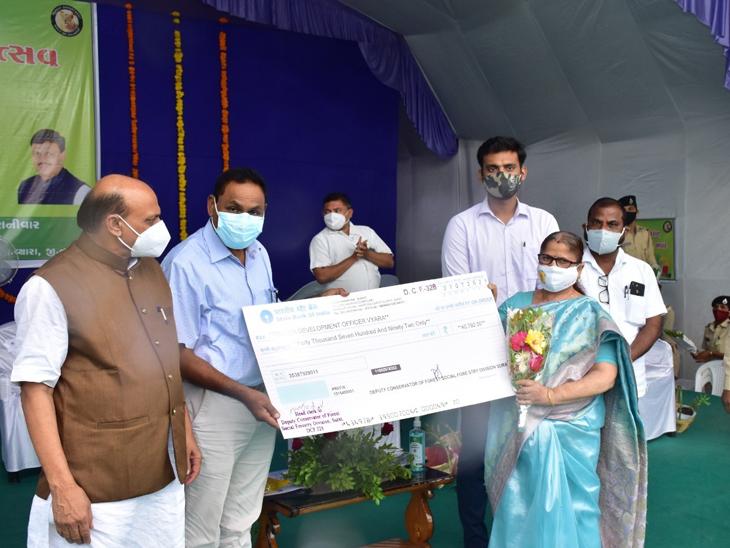 વ્યારામાં જિલ્લાકક્ષાના વન મહોત્સવની ઉજવણી કરવામાં આવી હતી. - Divya Bhaskar