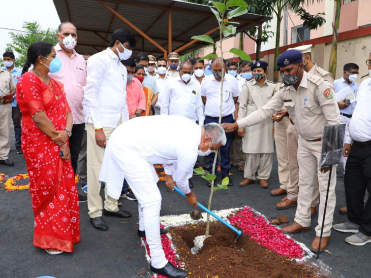 માંગરોળના વાંકલમાં વૃક્ષારોપણ કરી કૃષિપ્રધાન આર. સી. ફળદુએ કહ્યું,-'કલીન ગુજરાત ગ્રીન ગુજરાત'ના અભિગમને સાકાર કરીએ|સુરત,Surat - Divya Bhaskar