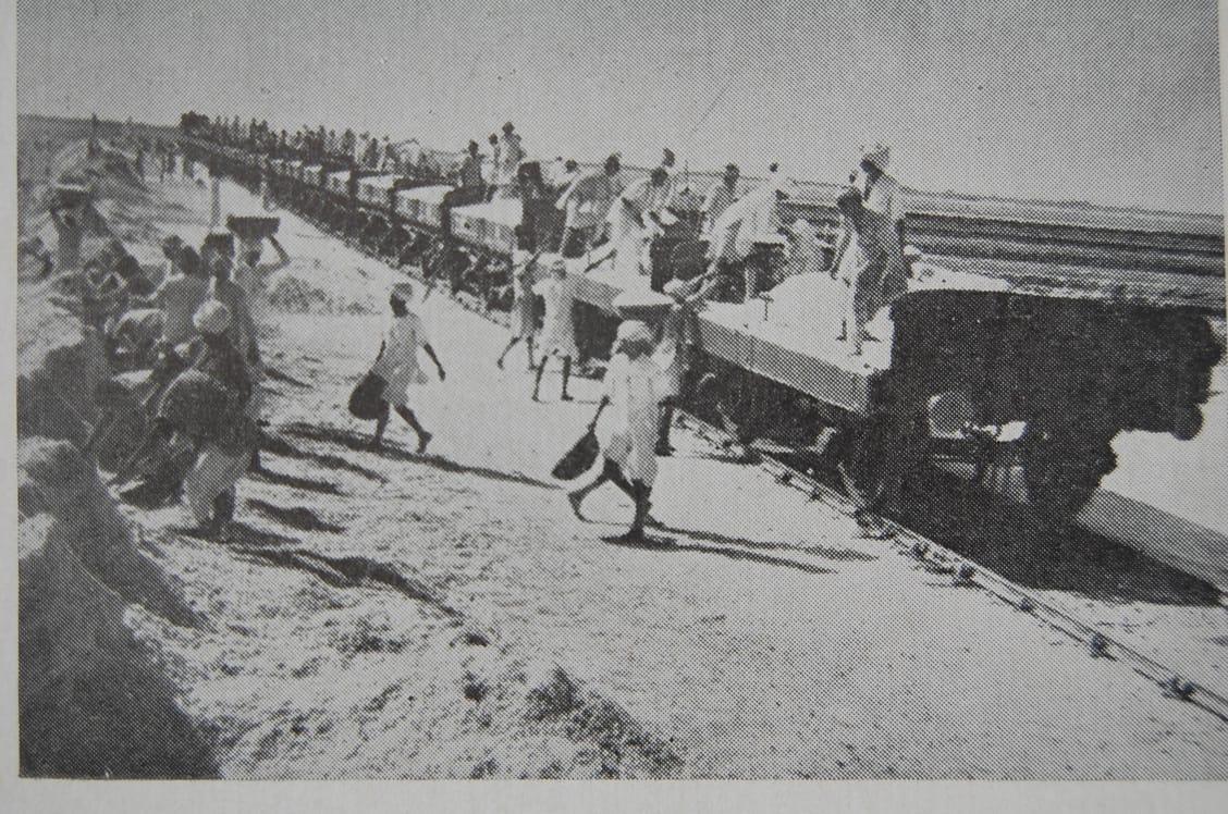 1947માં આઝાદી મળી ત્યારે ઝીંઝુવાડાના રણમાં ગાંધી-ઇરવીન કરારથી 25 અગરિયાઓને જ મીઠું પકવવાની મંજૂરી મળી હતી|સુરેન્દ્રનગર,Surendranagar - Divya Bhaskar